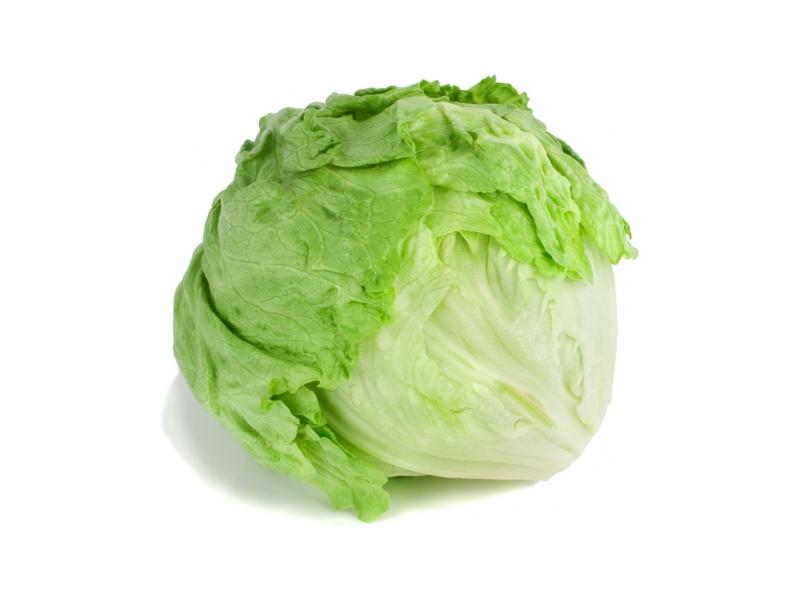 Ledový salát čerstvý (350g+)