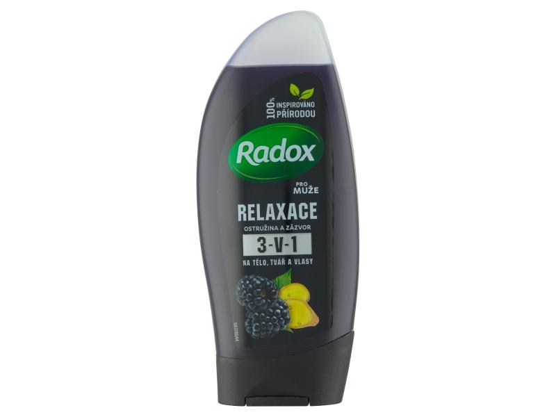 Radox Men Feel Wild Blackberry & Ginger 2v1 pánský sprchový gel a šampon 250ml